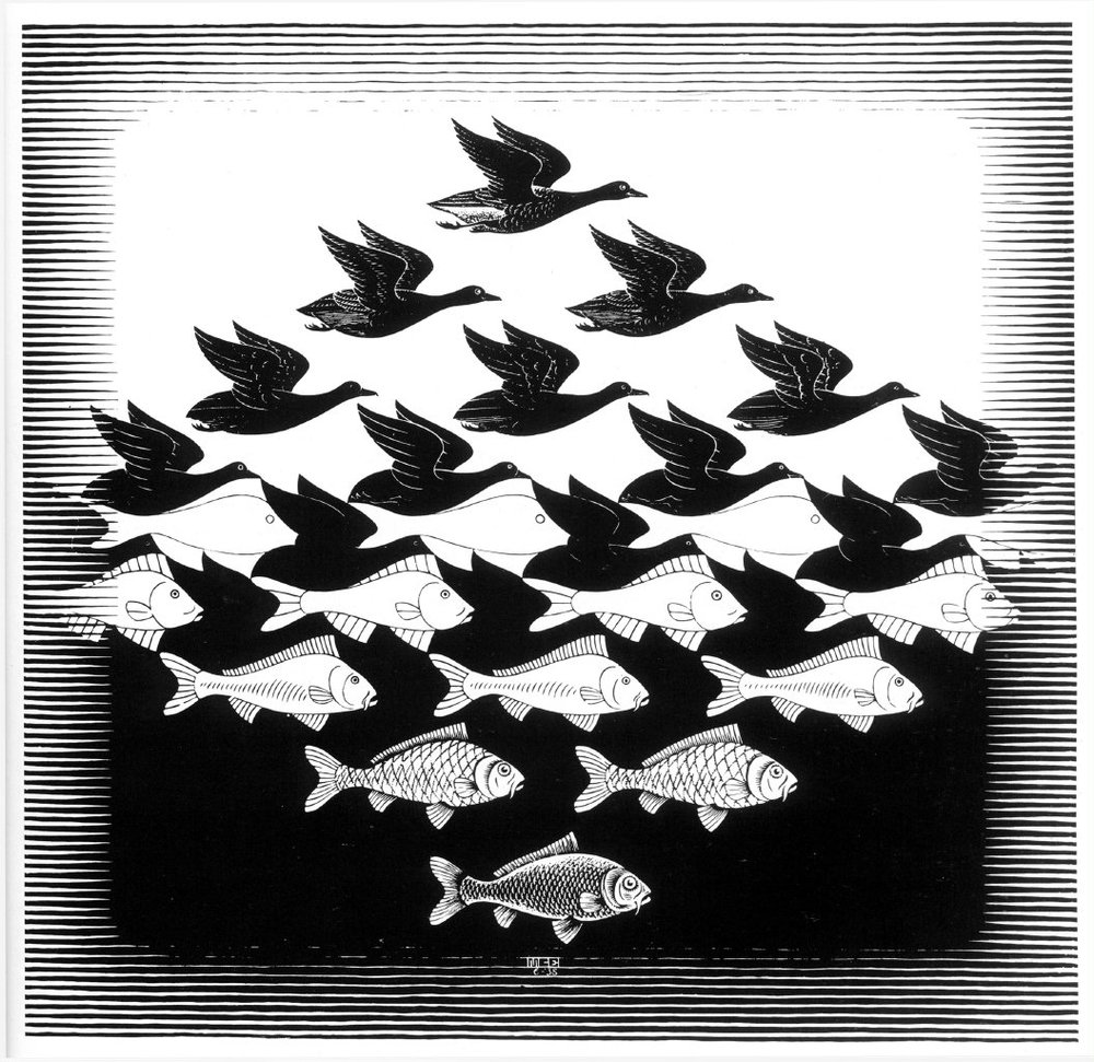 Illusion & Escher.jpg