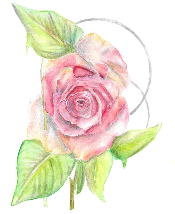 Keita Thomas - Rose Watercolour - They Rose Together