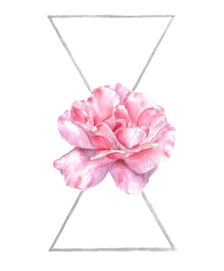 Keita Thomas - Rose Watercolour - She Rose Fruitful