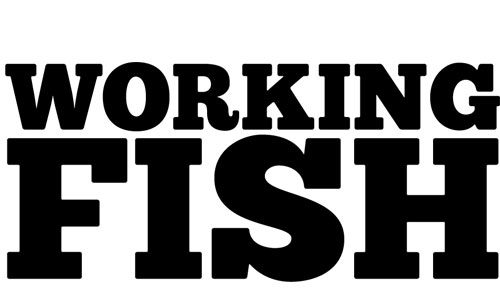 - Working Fish is a collaborative located in Los Angeles that creates comedy series, composed of Michael Jonathan Smith, Alex Aschinger and Chris Yule.They have developed with Disney Television Animation, Benderspink, Sony Television, and Universal Cable Productions, and their work has been featured all over the internet, including The Onion's AV Club. Outside working together, the three have maintained a strong friendship, rife with complicated handshakes and dark secrets.