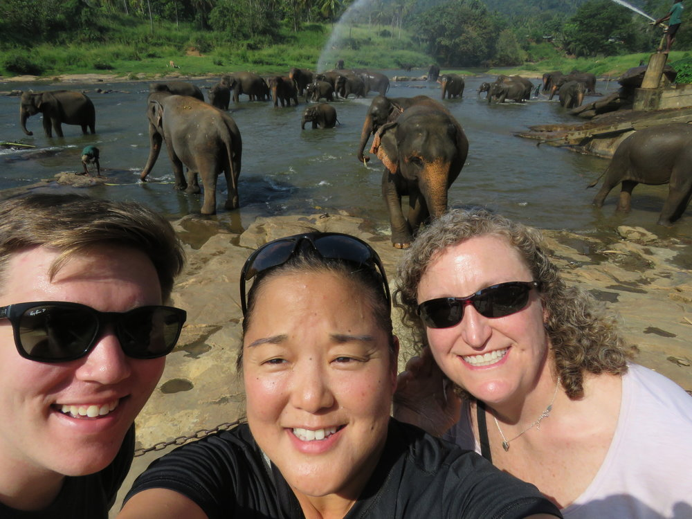 We couldn't resist a selfie with the Pinnawala elephants.