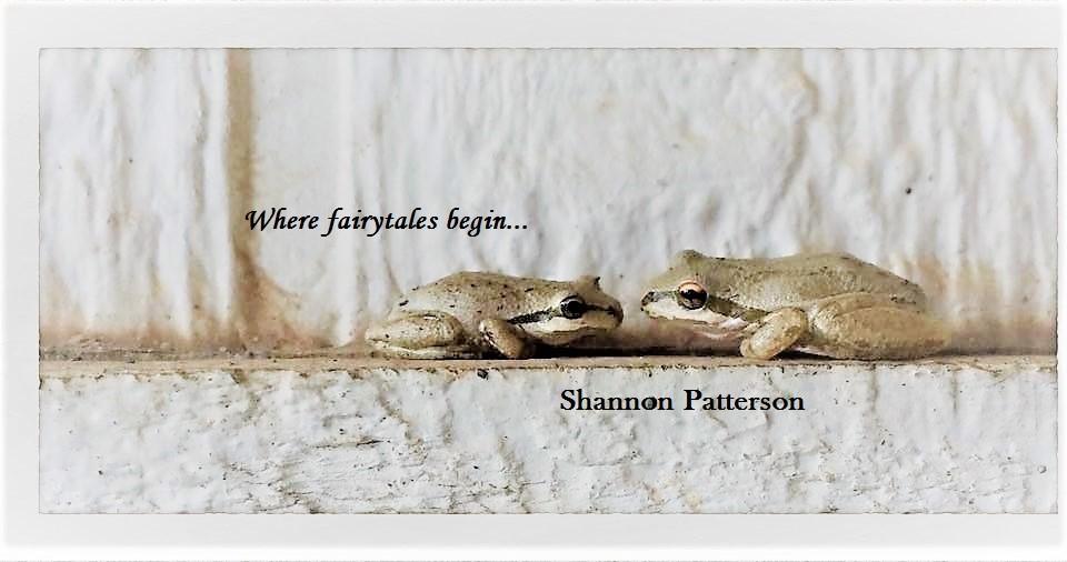 frogs 5 (2).jpg