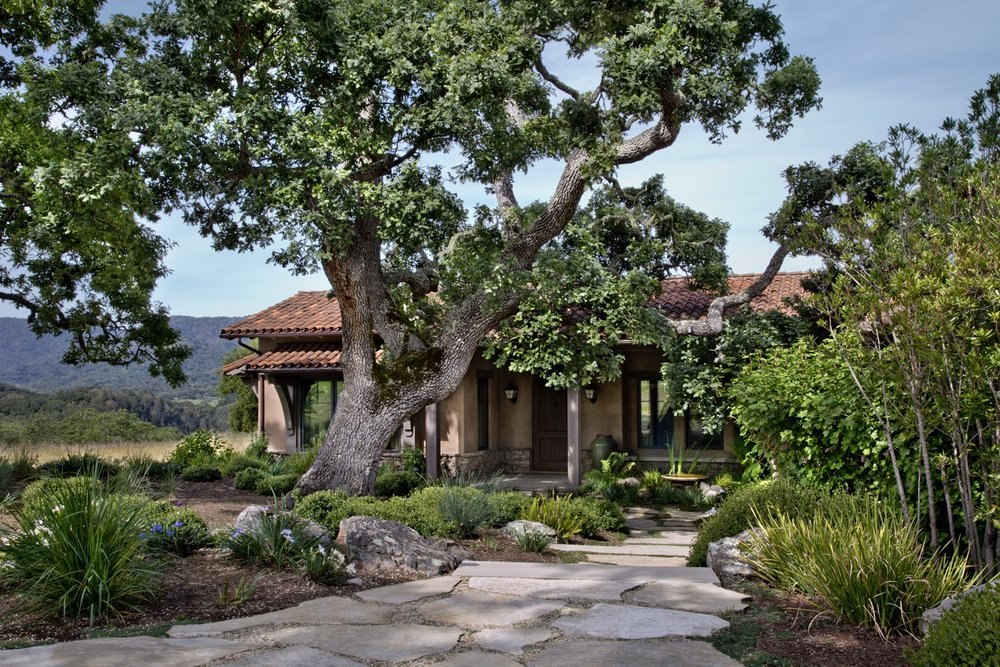 One of the landmark oaks shades the entrance to the home.