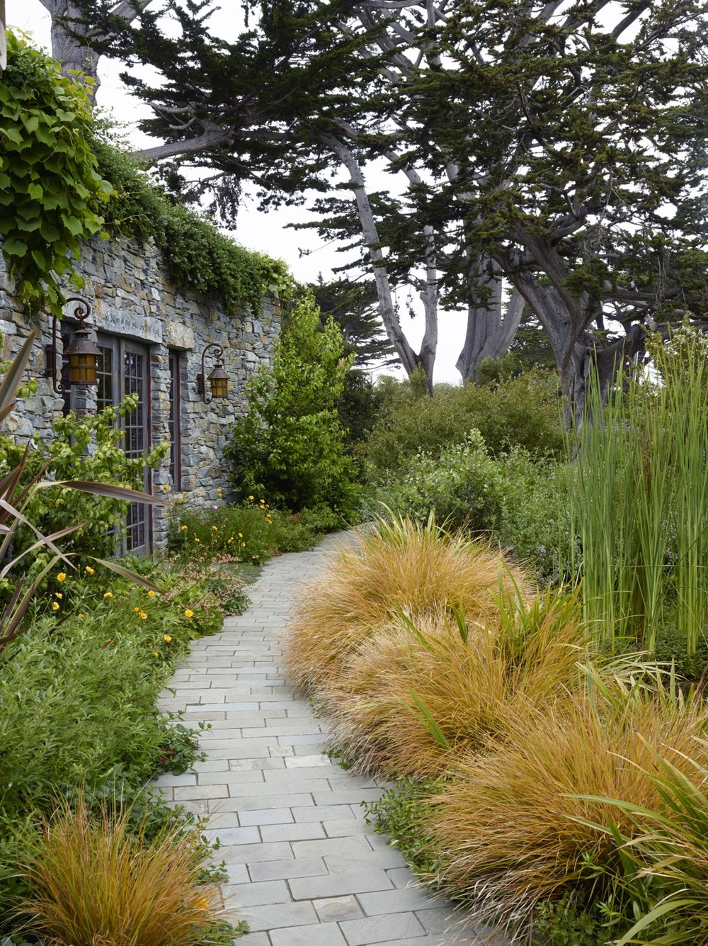 The low-water garden is full of colorful plantings.