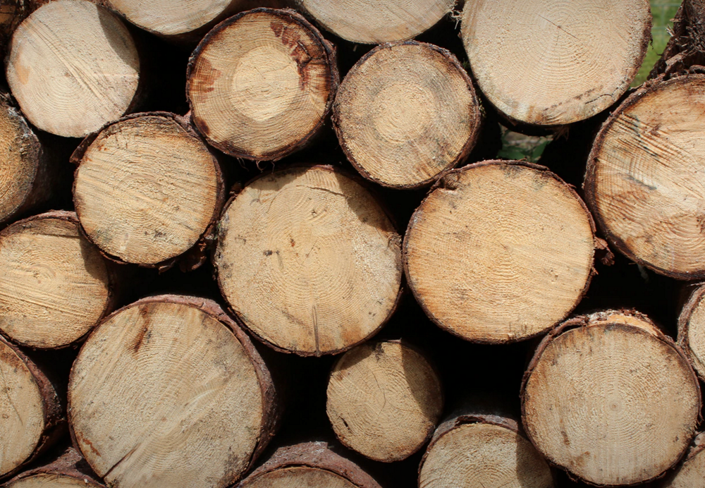 ec67c-woodwood.png