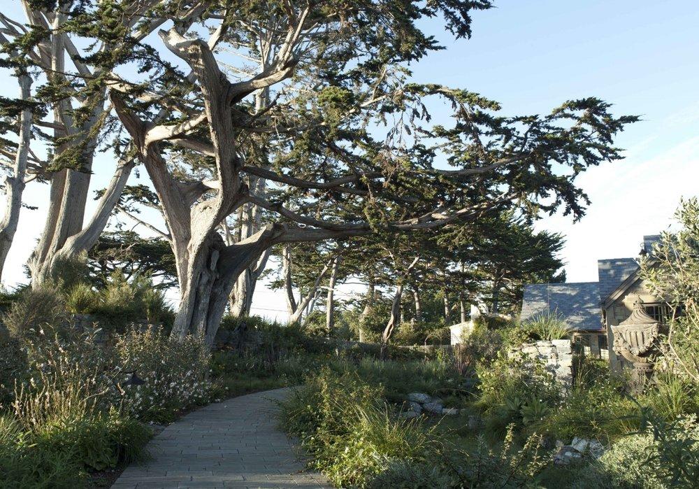 Literary Inspiration by Arterra Landscape Architects. Photo by David Livingston