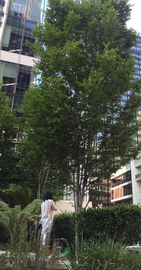 bd5ca-arterra-sketchy-terrace-07.jpg
