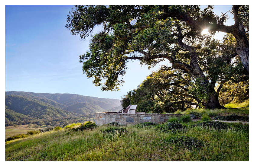 View Finder - Santa Lucia Preserve, CA