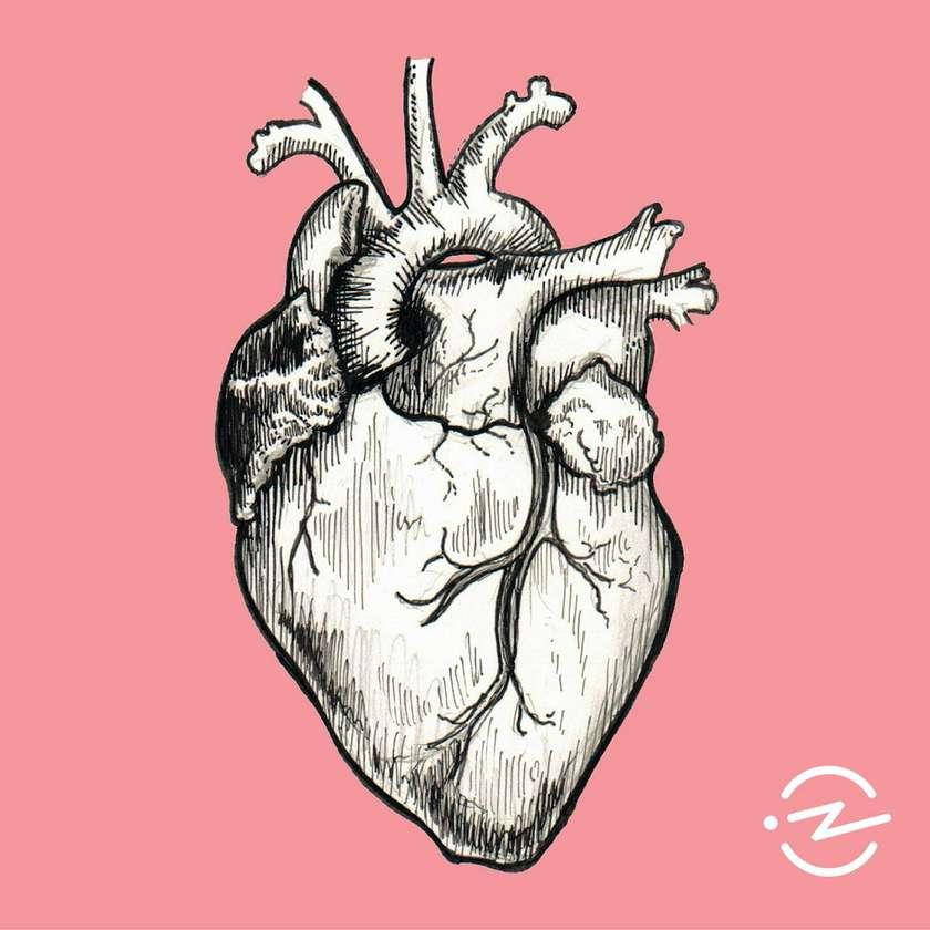 The Heart.jpeg