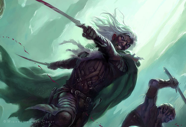 readers_drizzt_det01.jpg