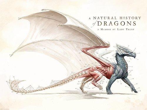 Natural History of Dragons — The Art of Todd Lockwood