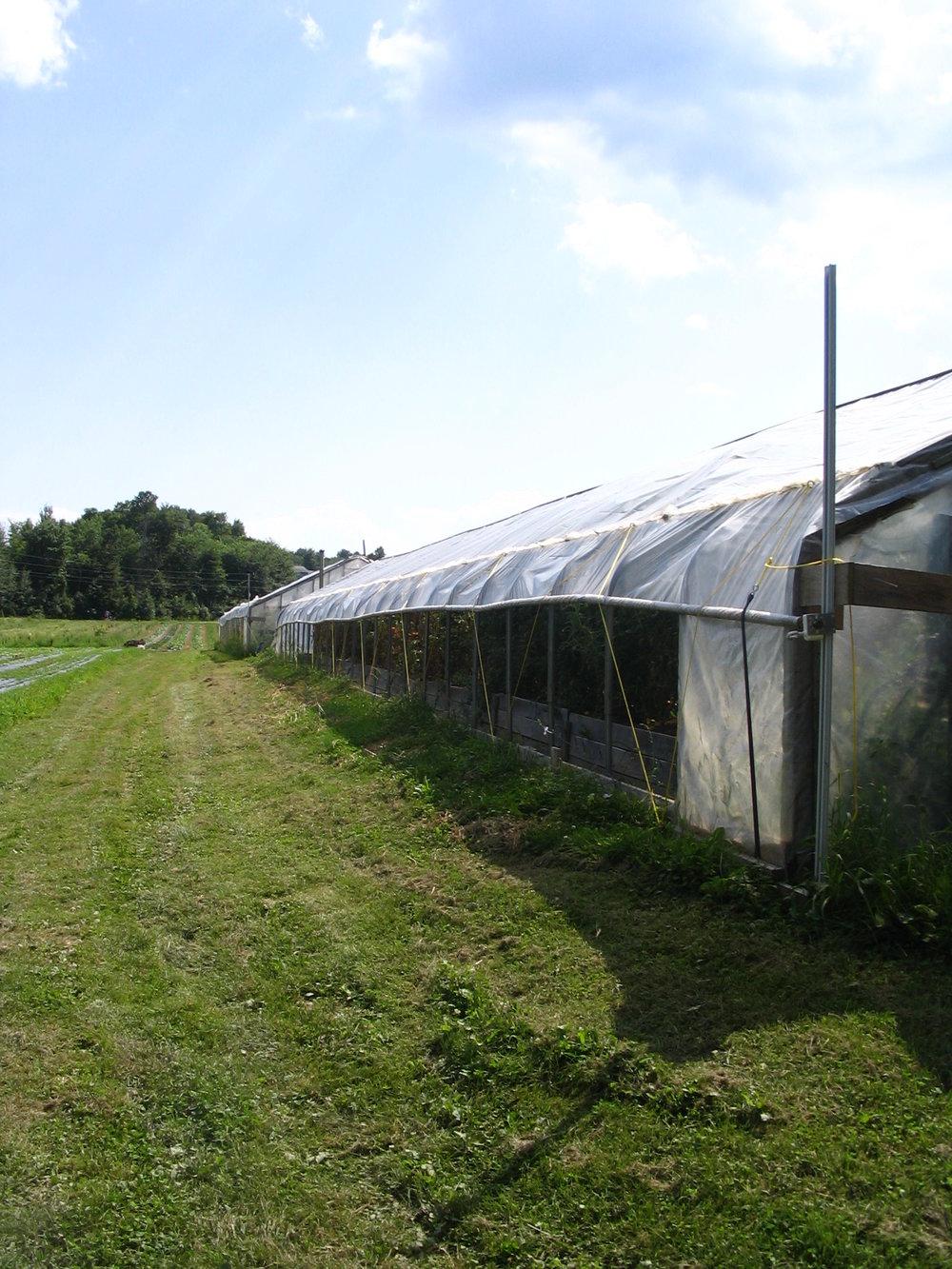 Pomykala Farm