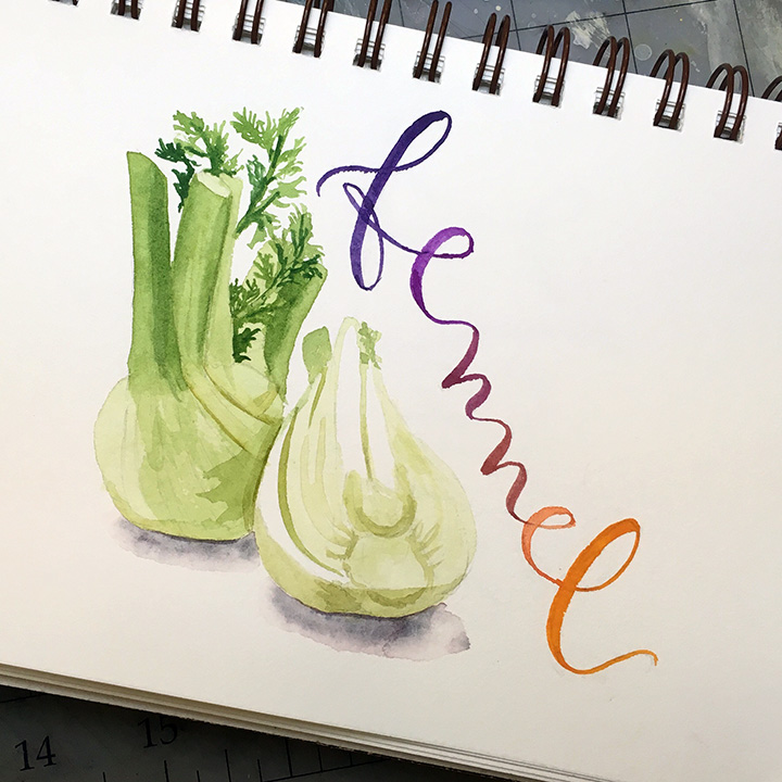 Fennel, watercolor © Denise Ortakales