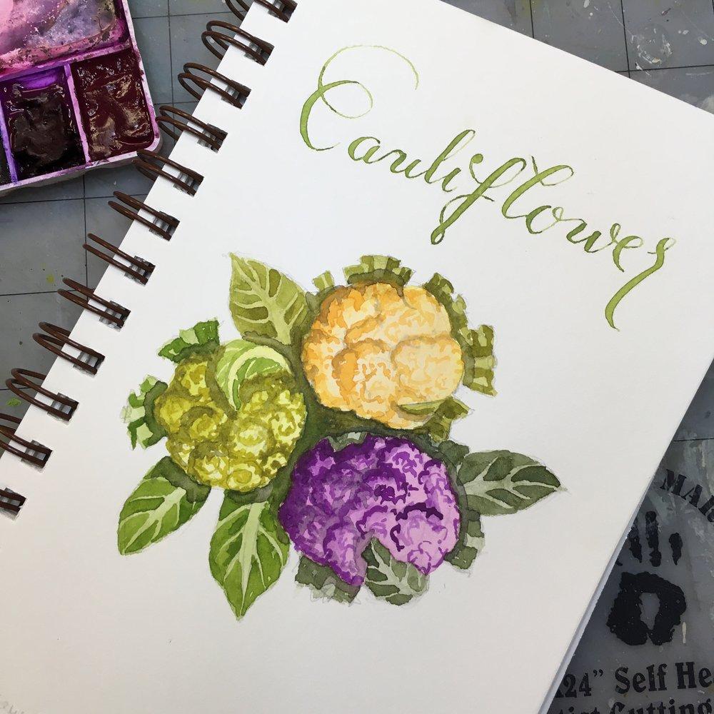 Cauliflower, watercolor © Denise Ortakales
