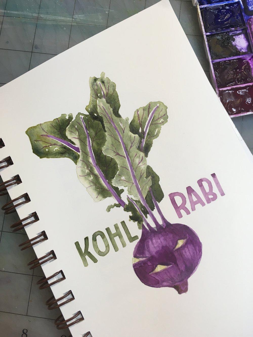 Kohl Rabi, watercolor © Denise Ortakales