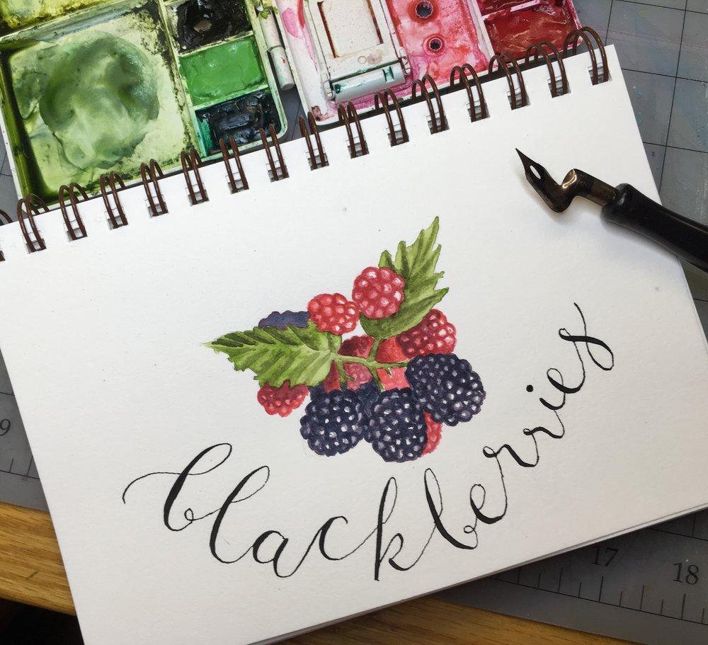 Blackberries, watercolor © Denise Ortakales