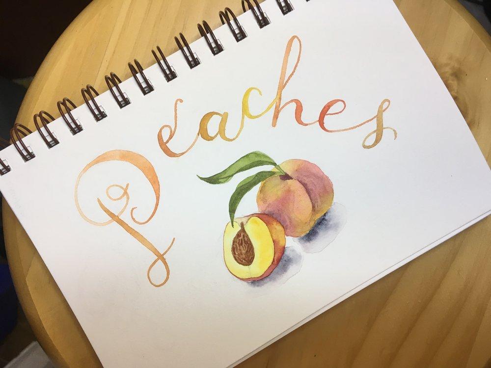 Peaches, watercolor © Denise Ortakales