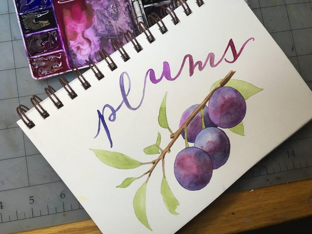 Plums, watercolor © Denise Ortakales