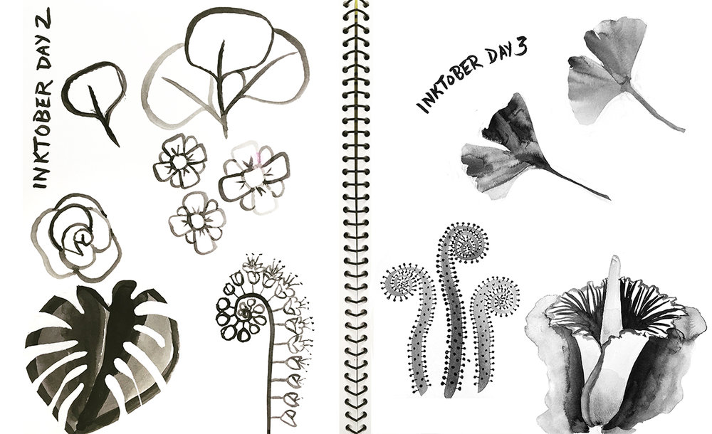 Inktober Florals, India Ink and white gouache © Denise Ortakales