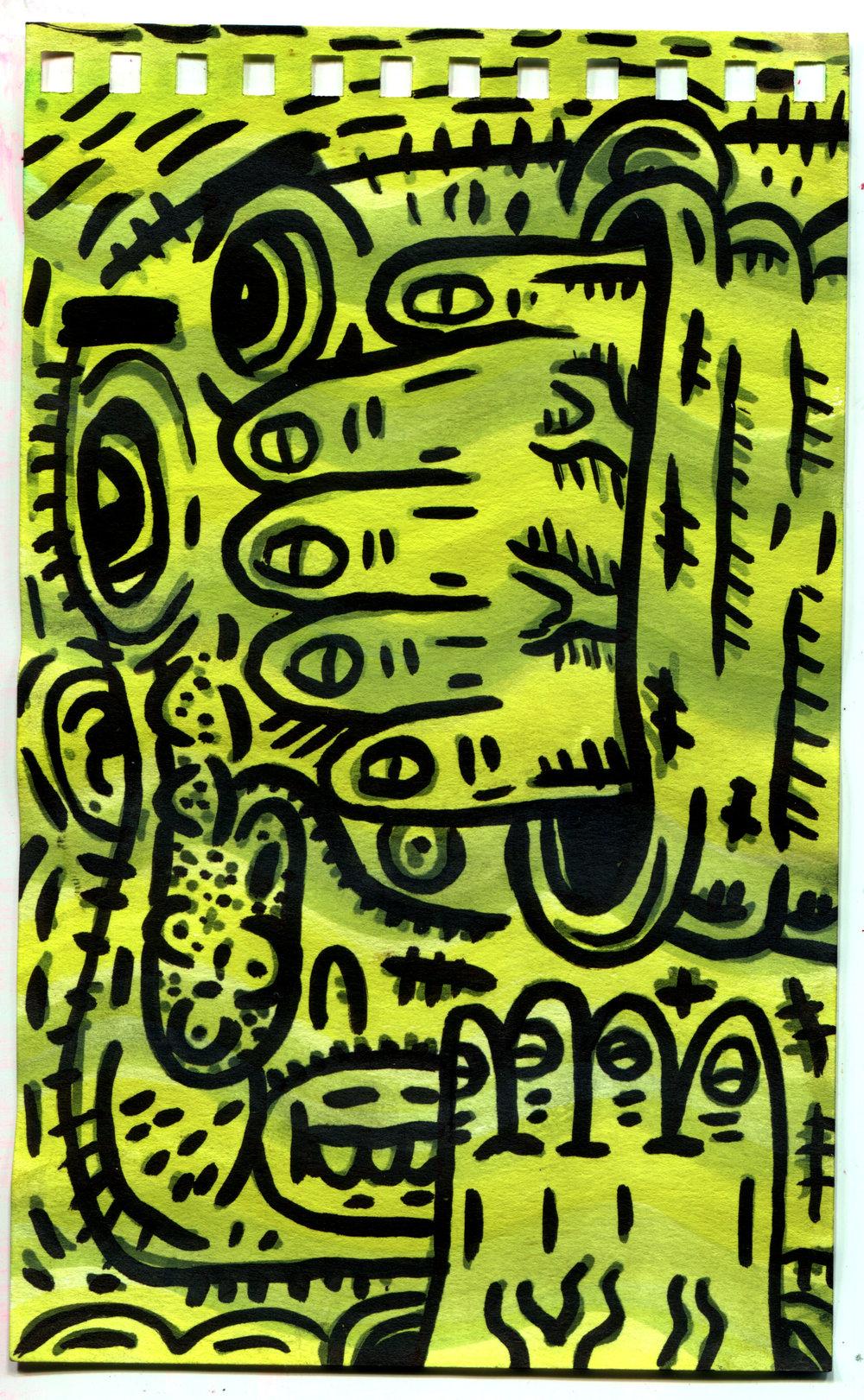 yellows.jpg