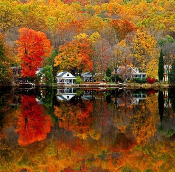 Amazing fall colors in Door County WI & Maple Manor Vacation Rental Home in Door County WI u2014 Maple Manoru0027s ...
