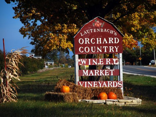 636100506931203981-Orchard-Country-Winery-Fall-Sign.jpg