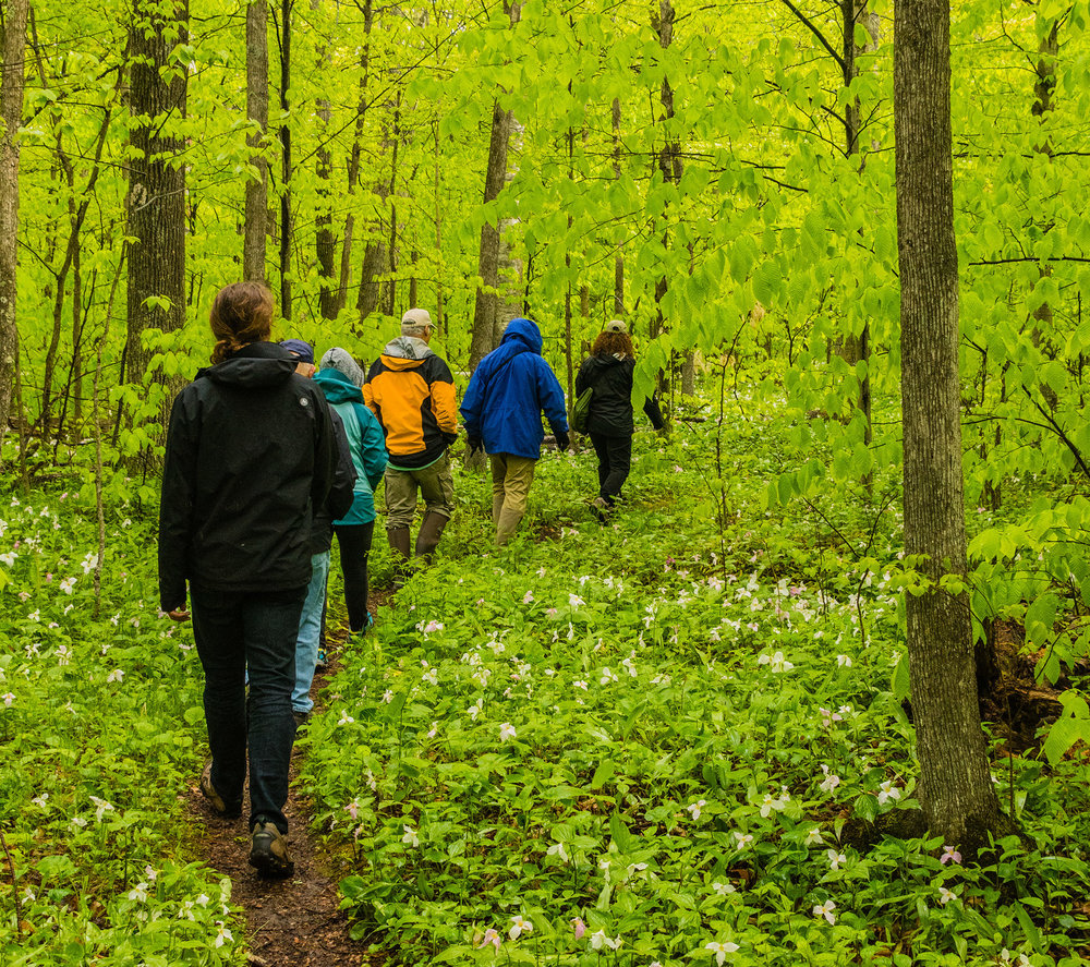 - Door county offers plenty of areas for hikers and nature lovers to explore throughout the peninsula.