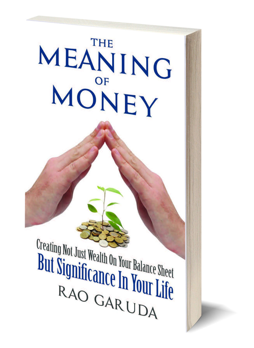 Meaning of Money Book Image for Web.jpg
