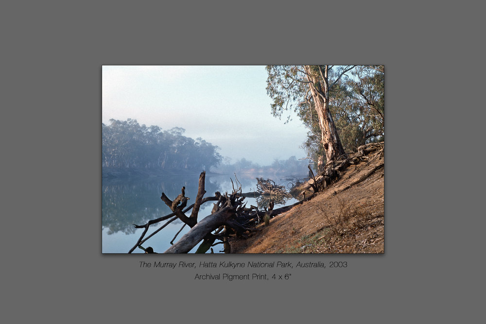 The Murray River, Hatta Kulkyne National Park, Australia, 2003
