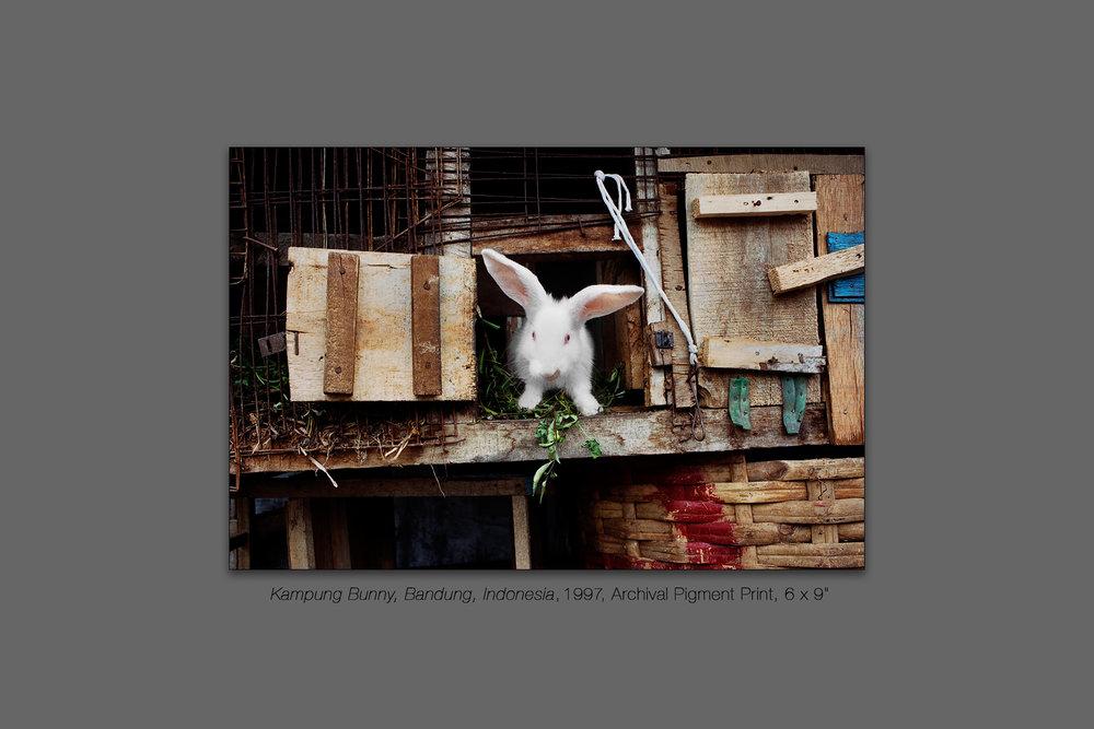 Kampung Bunny, Bandung, Indonesia, 1997