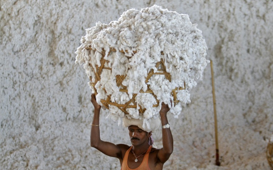 Cotton-Production-India