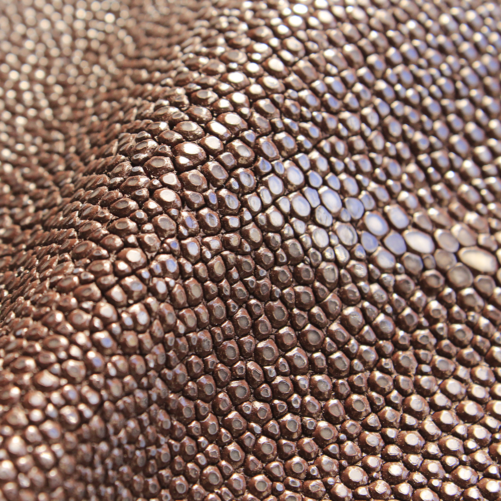 Stingray Leather Natural Skin - Brown