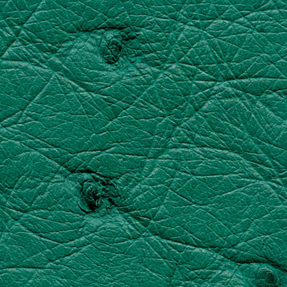 Ostrich Body Skin in Brilliant Green