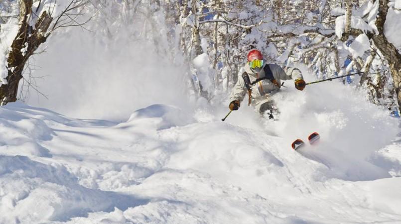 skiing-powder-japan-805x450.jpg