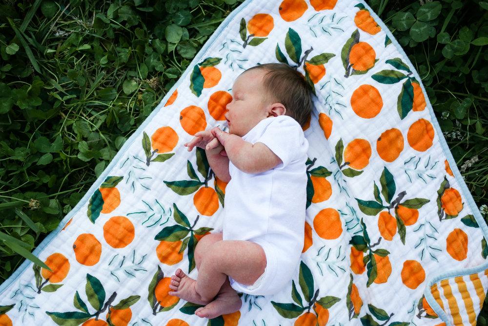 henderson newborn 2017-332.jpg