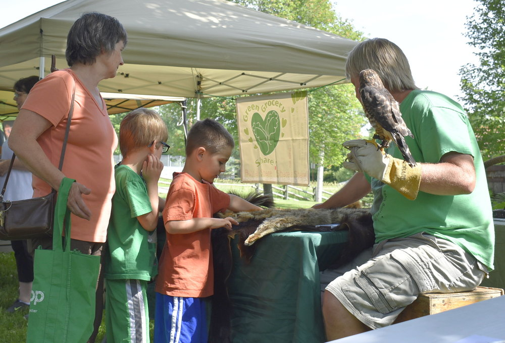 The Wildlife Science Center brought a broad-winged hawk and pelts from various animals. Many people of all ages stopped by to learn more about raptors and animals that live in Minnesota.