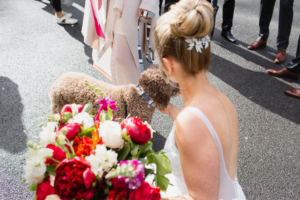 Folkstone-LC-Wedding-Web-165.JPG