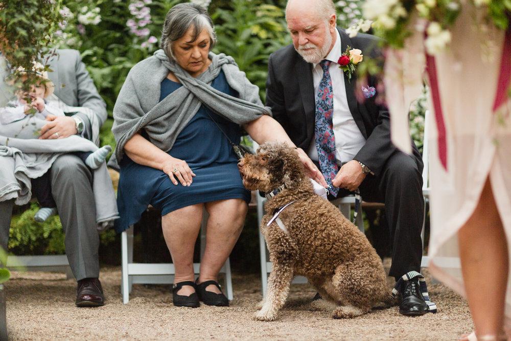 Folkstone-LC-Wedding-Web-288.JPG