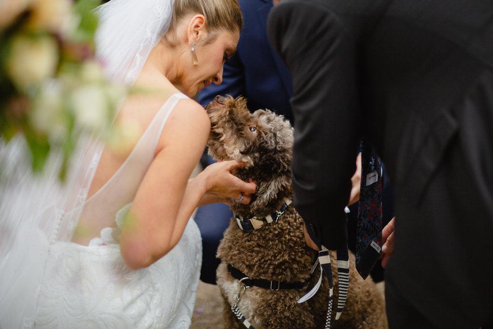 Folkstone-LC-Wedding-Web-291.JPG