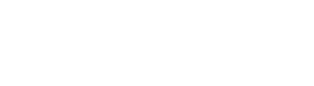 MS Silver Partnership logo-white (1).png