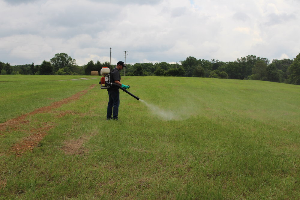 Spraying Field