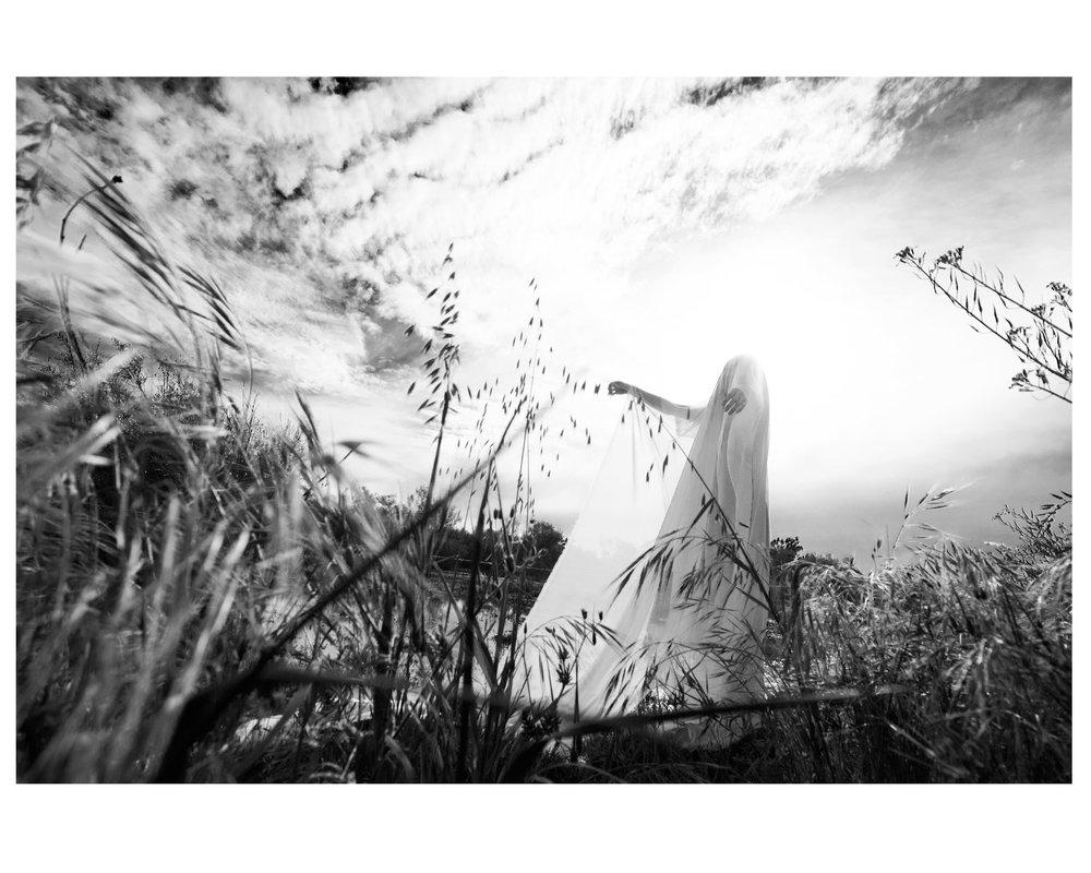 Marsh-1.jpg