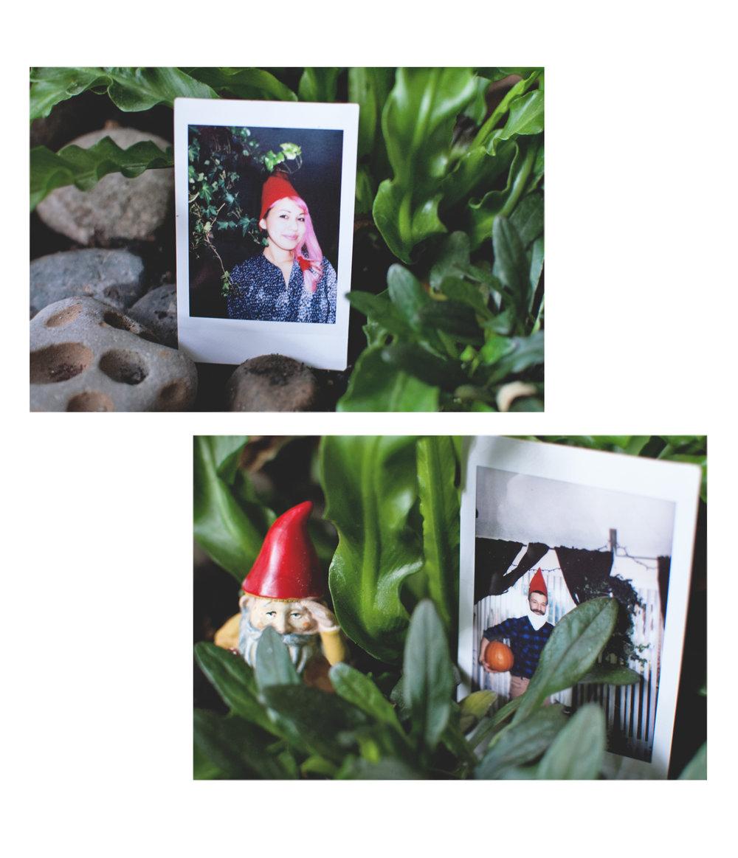 gnomes2.jpg