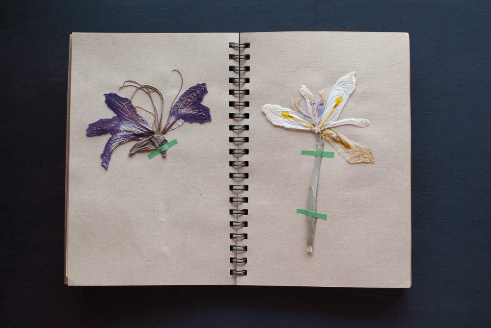 flowerbook_page1.jpg