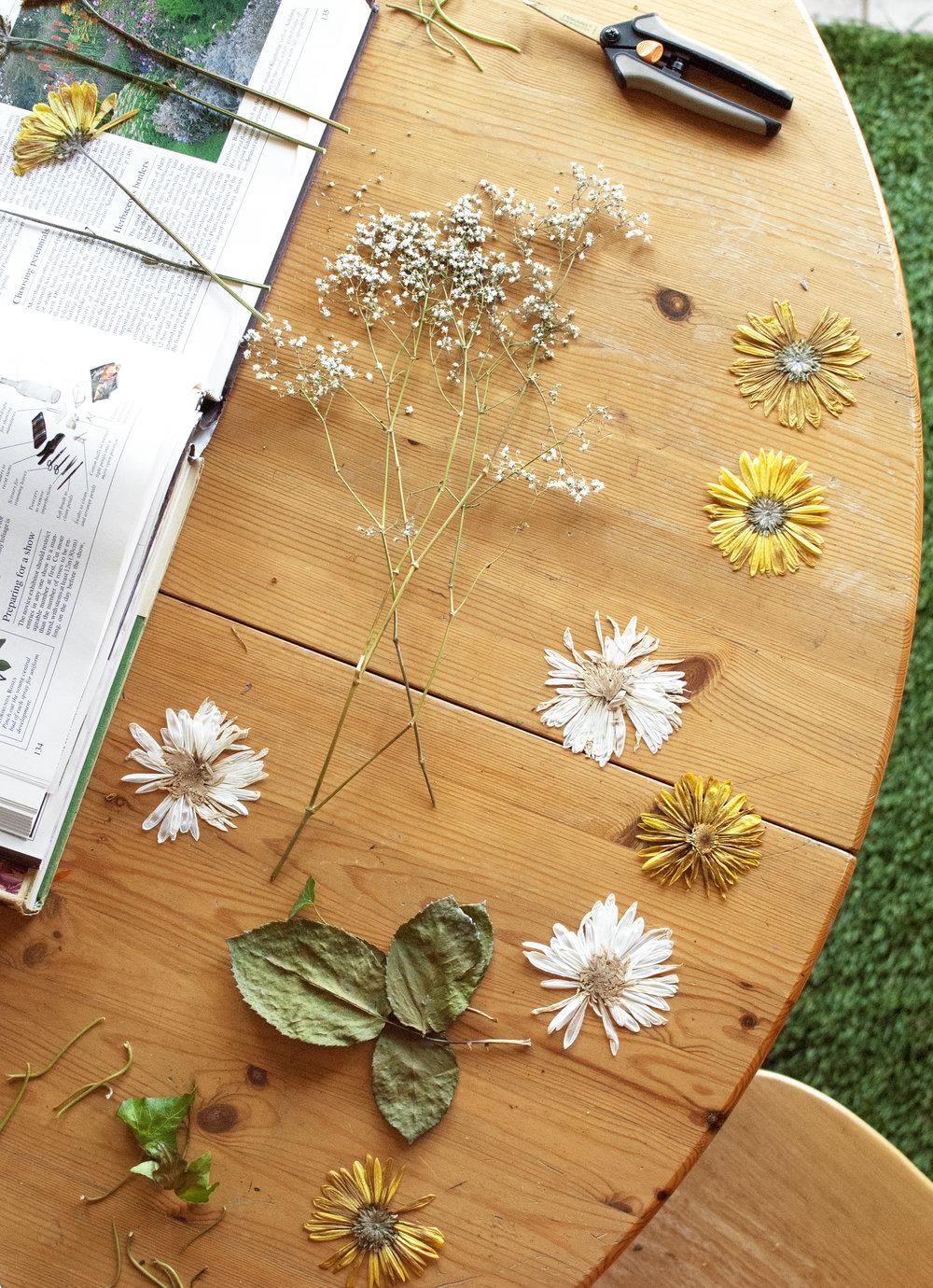 flowerpressings.jpg
