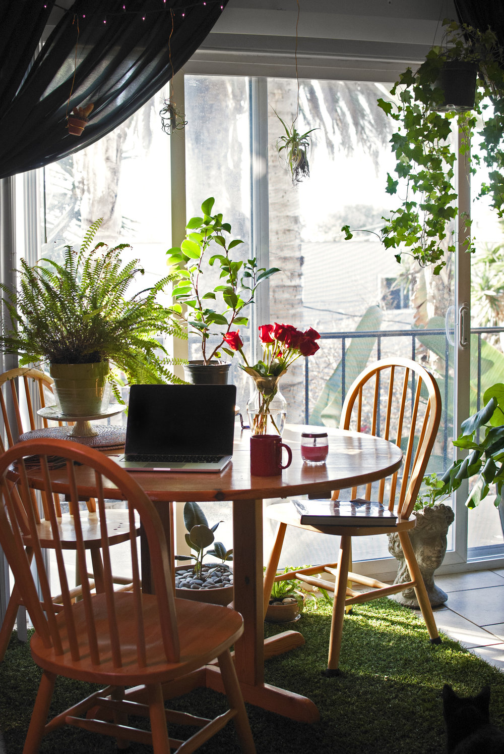 I'll miss drinking coffee at this table, studying, writing, and working on creative projects here.  DETAILS -Cake stand as plant stand -Goddess blooming begonias -Plants hanging from fairy lights -Grass rug