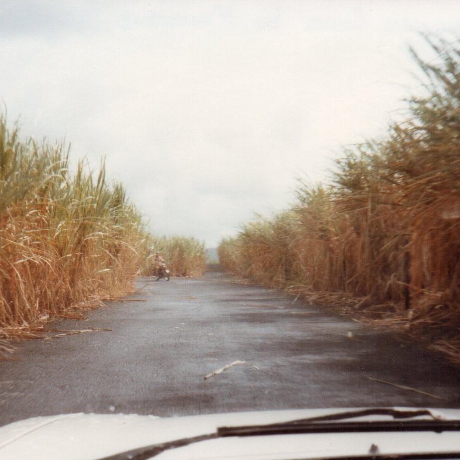 Road in Mauritius -
