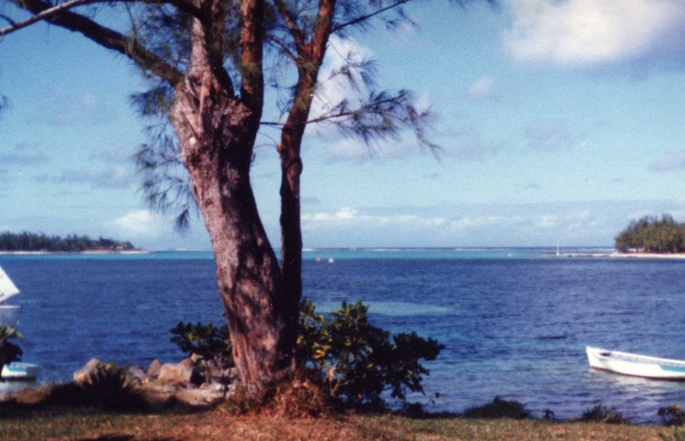 Sheltered bay where we snorkeled -