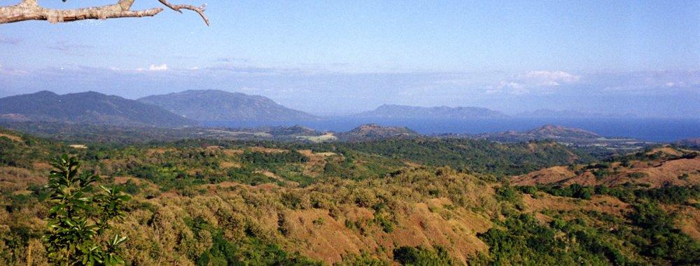 View towards mainland