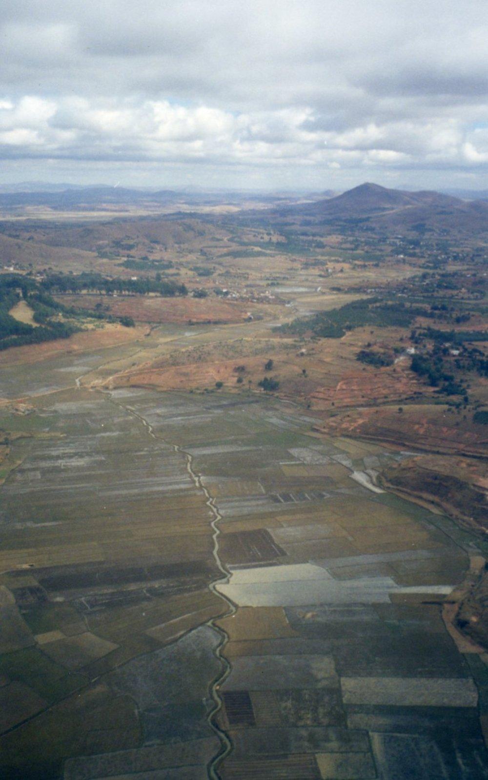 Rice paddies of Madagascar